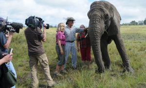 Jack Hanna filming one of his shows